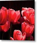 2012 Tulips 02 Metal Print