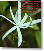 Flower For You  Metal Print