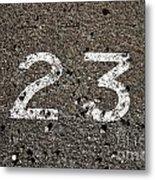 23 Metal Print