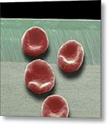 Red Blood Cells, Sem Metal Print