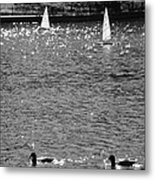 2boats2ducks In Black And White Metal Print