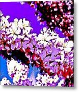 Cherry Blossom Art Metal Print