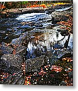 Fall Forest And River Landscape Metal Print