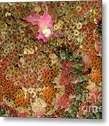Fluorescent Sea Anemone Metal Print