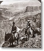 Grand Canyon: Sightseers Metal Print