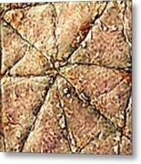 Human Skin Surface, Sem Metal Print