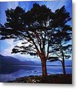 Lough Leane, Lakes Of Killarney Metal Print