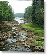 Low Tide In Maine Part Of A Series Metal Print