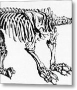 Megatherium, Extinct Ground Sloth Metal Print