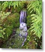 Mossy Waterfall Metal Print