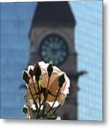 Nature With Architecture Metal Print
