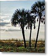 3 Palms On The Beach Metal Print