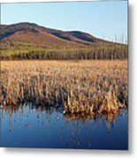 Pondicherry Wildlife Refuge - Jefferson New Hampshire Metal Print
