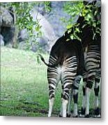 Two Stripes Metal Print
