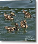 3 Up And 1 Down Metal Print by Kenny Bosak