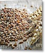 Wheat Ears And Grain Metal Print