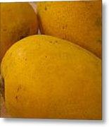 3 Yellow And Luscious Mangos On A White Sheet Metal Print