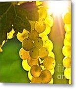 Yellow Grapes Metal Print