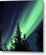 Aurora Borealis Above The Trees Metal Print