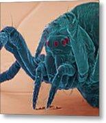 Baby Spider, Sem Metal Print