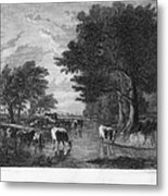 Cattle, 19th Century Metal Print