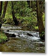 Craig Run Monongahela National Forest Metal Print