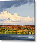 Fall Forest And Lake Metal Print