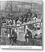 Kansas: Black Exodus, 1879 Metal Print