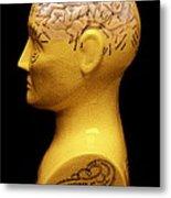 Phrenology Bust Metal Print