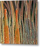 Retina Rod And Cone Cells, Sem Metal Print