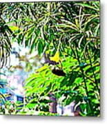 Story Of A Small Bird Metal Print