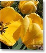 Tulip Named Big Smile Metal Print