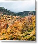 White Mountain's Gold Metal Print