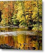 Williams River Autumn Metal Print