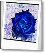 Flowers Flowers And Flowers Metal Print
