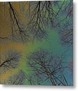Epping Forest Art Metal Print