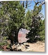 Grand Canyon National Park Usa Arizona Metal Print by Audrey Campion