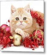 Kitten With Tinsel Metal Print