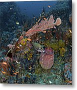 Reef Scene With Coral And Fish Metal Print