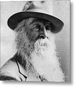 Walt Whitman (1819-1892) Metal Print