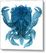 X-ray Of Deep Water Crab Metal Print
