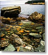 Atlantic Coast In Newfoundland Metal Print by Elena Elisseeva