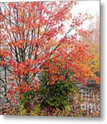 Fall Color Along The Highland Scenic Highway Metal Print
