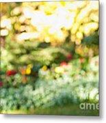 Flower Garden In Sunshine Metal Print