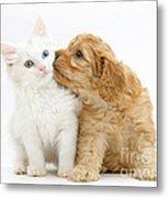Kitten And Puppy Metal Print