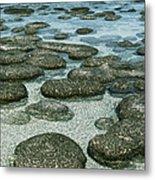 Stromatolites Metal Print by Georgette Douwma