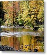 Williams River Autumn Metal Print