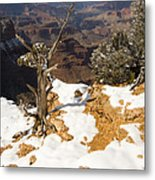 Winter Time On The South Rim Metal Print