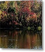 Sugar Ridge State Fish And Wildlife Area Metal Print