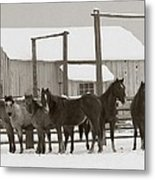 71 Ranch Metal Print by Diane Bohna